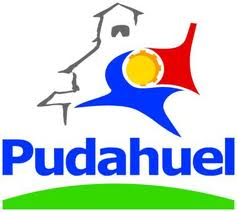 Campaña de arborización de calle Ara en Pudahuel Sur | Diario Tropezón